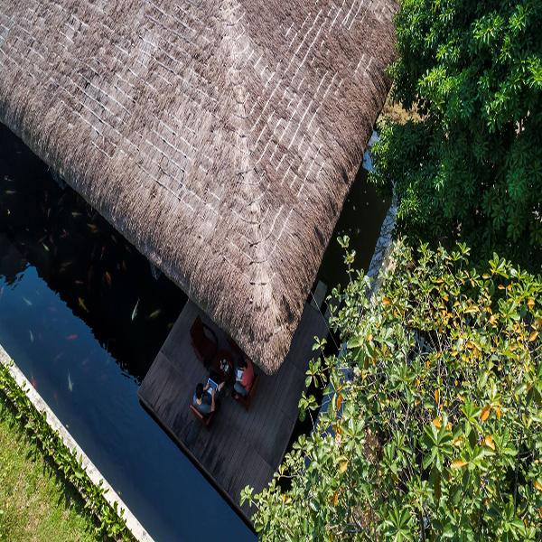 mái tranh nhà Am House