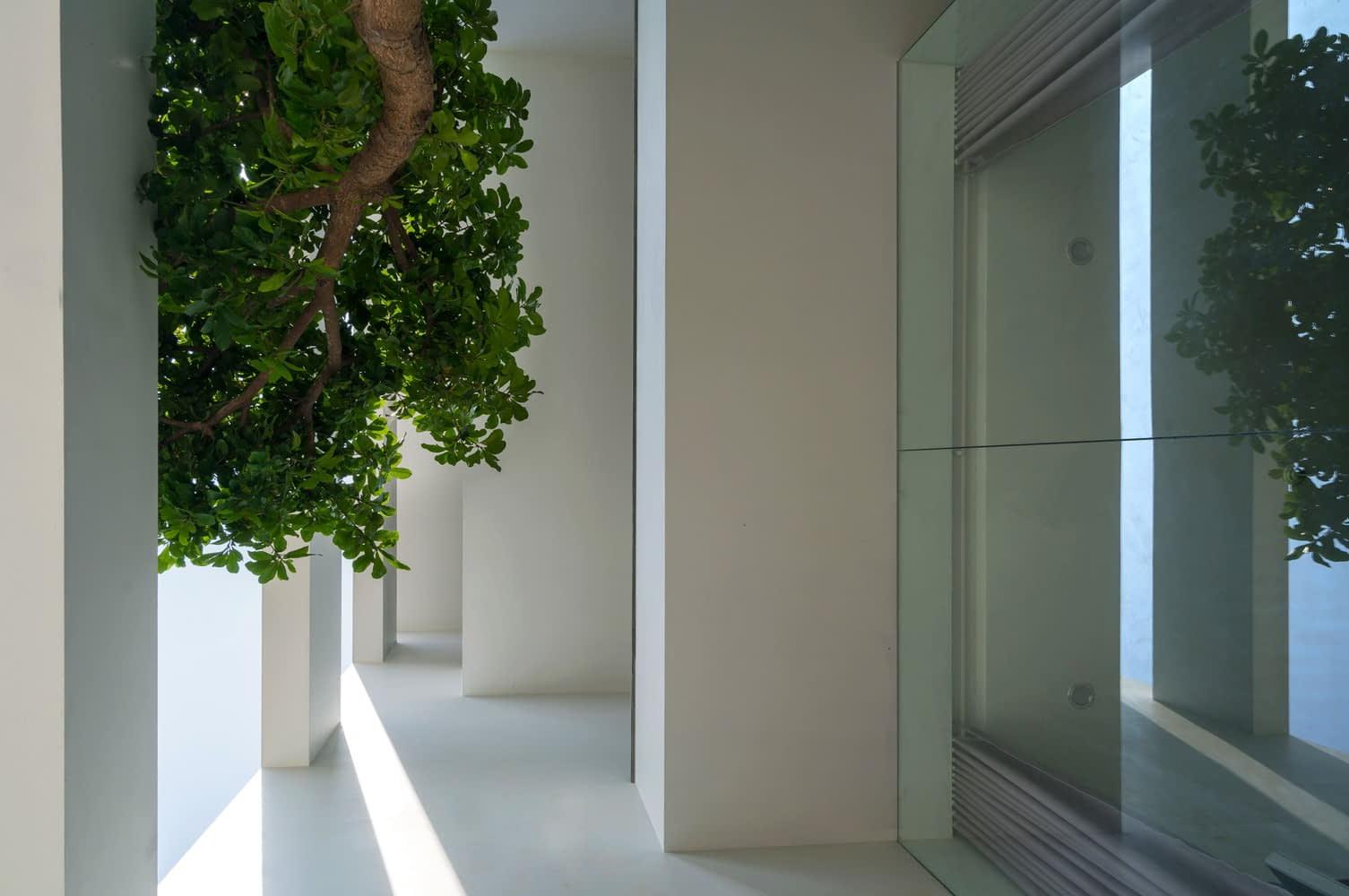 Hệ cửa kính giúp lấy sáng cho căn nhà