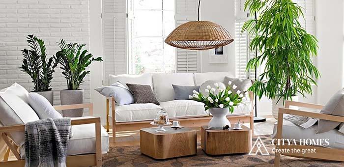 Những loại cây để phòng khách vừa thẩm mỹ vừa phong thủy tốt